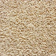 save money on carpet